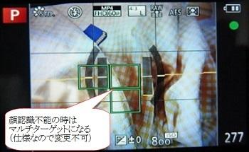 13_1.jpg